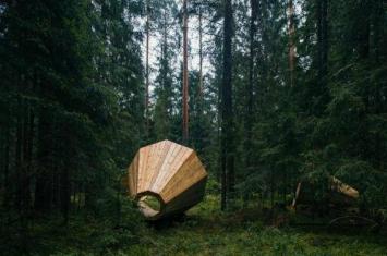 爱沙尼亚森林中摆放巨大木质扩音器 让游客可以清晰地欣赏到森林中的自然之音