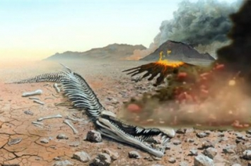 地球上发生过几次生物大灭绝