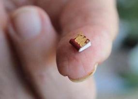 世界上最小的书,仅25微米比人的头发还小(要用显微镜看)