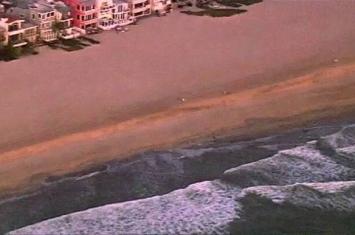 美国加州洛杉矶橘子郡海滩3米鲨鱼出没