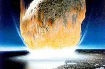 美国科罗拉多发现的化石揭示动植物如何从6600万年前灭绝恐龙的小行星撞击中再生